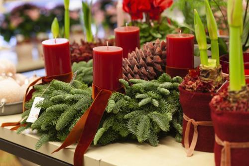 Blumengestalten Weihnachten 2108 ©Marlene Rahmann 13