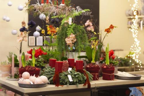 Blumengestalten Weihnachten 2108 ©Marlene Rahmann 15