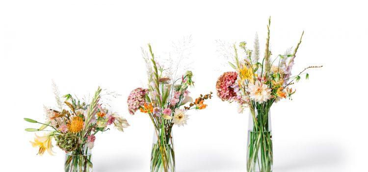 Blumen im Lockdown