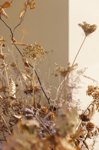 Blumengestalten Weihnachten 2108 ©Marlene Rahmann 59